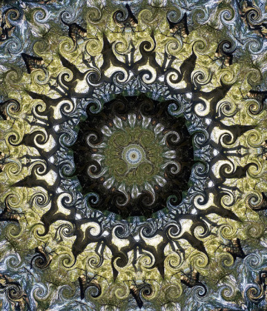 tree_kaleidoscope_curly
